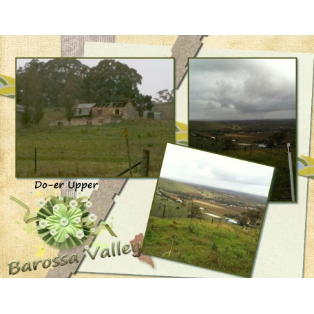 Barossa Valley Strips