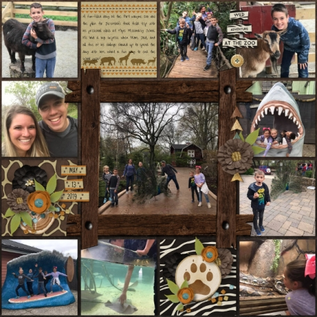 Wild Adventure at the Zoo
