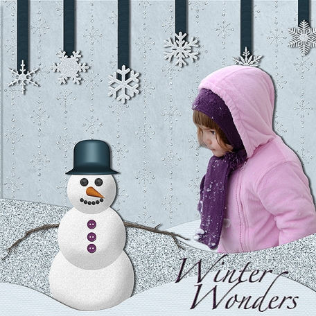 Winter Wonders