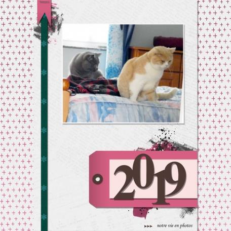 The Good Life january 2019 - Marisa Lerin