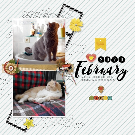 The good life February 2020