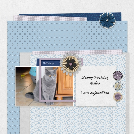 Layout Templates kit #54-The good life March 2020