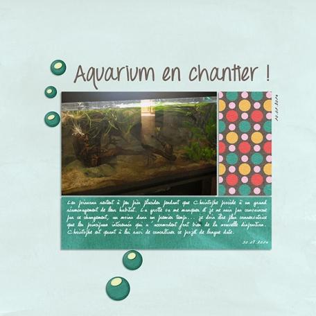 Aquarium en chantier
