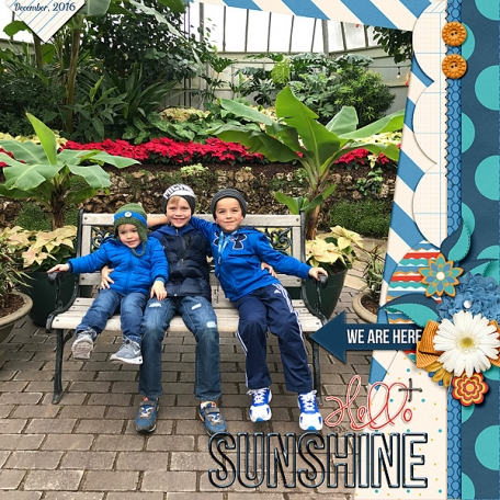Hello Sunshine (3 boys)