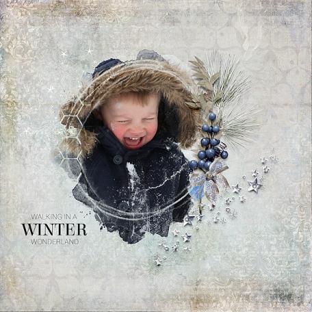 Hello January (the big snow)