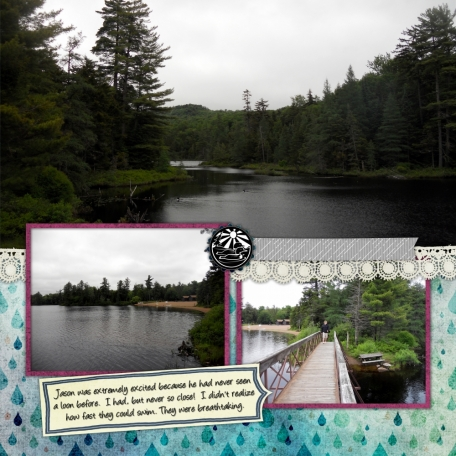 Nick's Lake 2014 - Loons 2