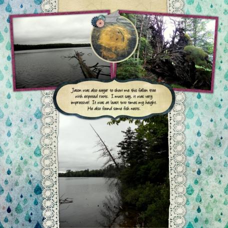 Nick's Lake 2014 - Nature