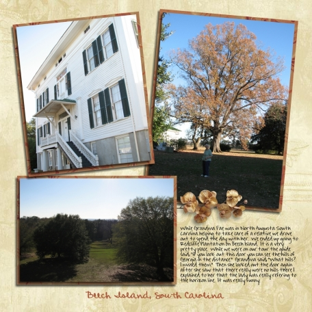 Redcliffe Plantation (page 2)