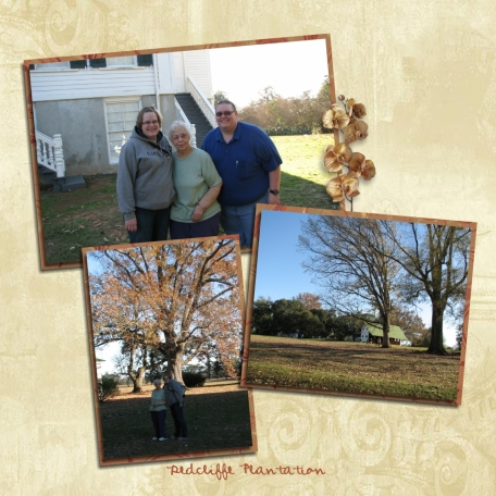 Redcliffe Plantation (page 1)