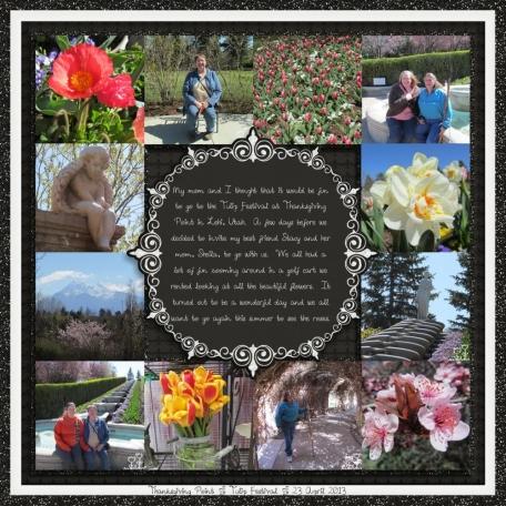 tulip festival 3/5