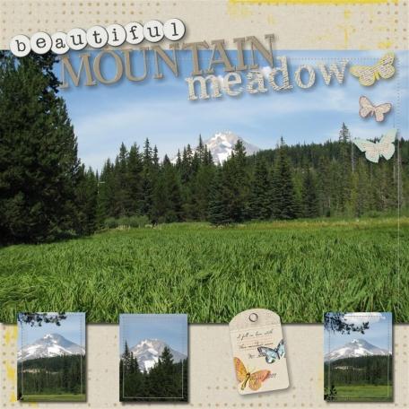 beautiful mountain meadow (1/2)
