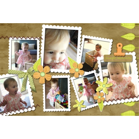 Baby Book: Nia's Second Year (3/12)