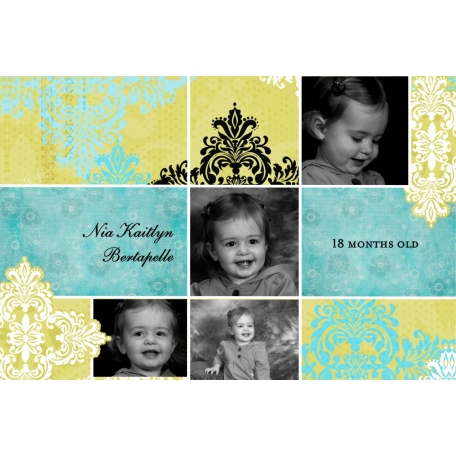 Baby Book: Nia's Second Year (12/12)