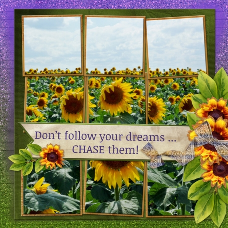 Don't follow your dreams ... CHASE them!