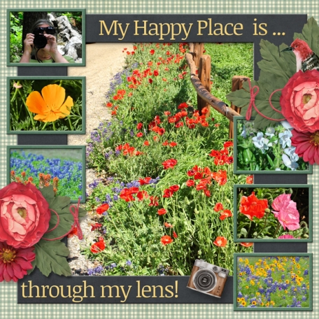 My Happy Place is through my lens!  (sher)