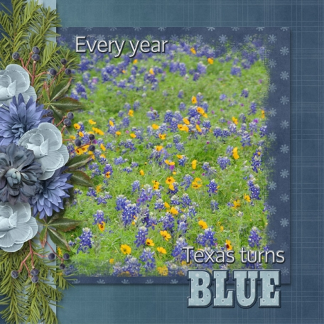 Every year Texas turns BLUE (sher)