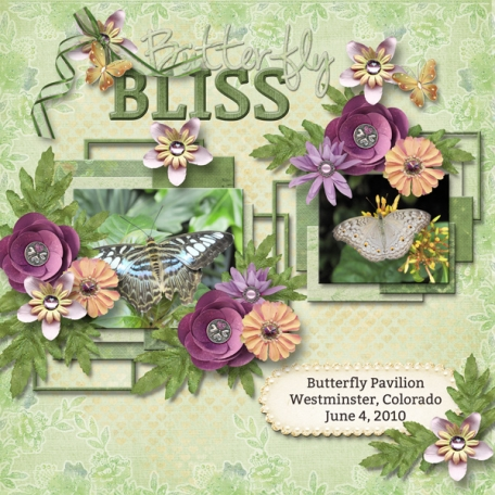 Butterfly Bliss (ads)