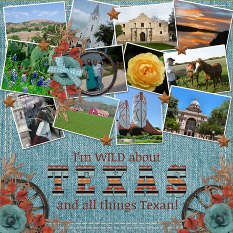 I'm WILD about TEXAS and all things TEXAN (gs)