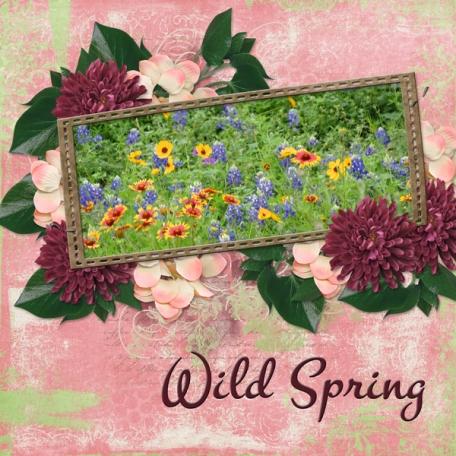 Wild Spring (DFDD)