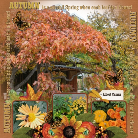 AUTUMN is a second Spring (WLM)