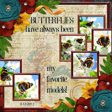 Butterflies have always been my best models!  (DFDD)