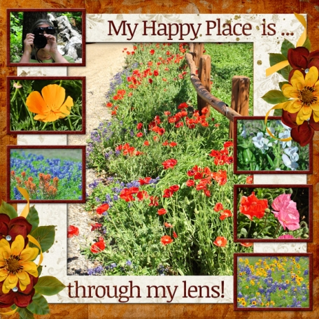 My Happy place ... is through my lens!  (DFDD)