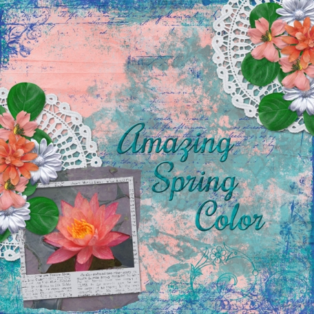 Amazing Spring Color (DFDD)