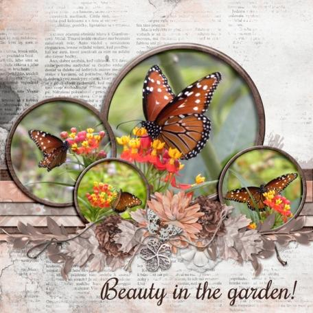 Beauty in the Garden (dfdd)