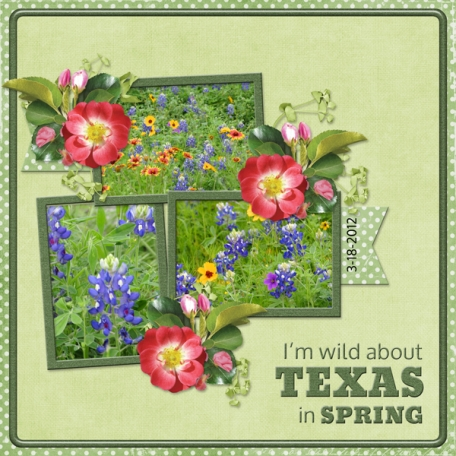 I'm wild about TEXAS in SPRING (WD)