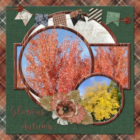 Glorious Autumn (JDunn)