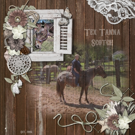 Tex Tanna Scotch