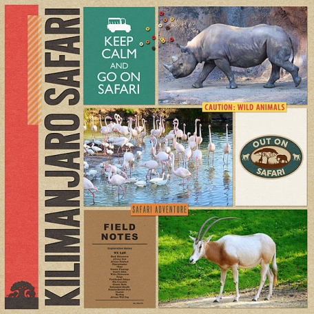January 2017- Riding Kilimanjaro Safari