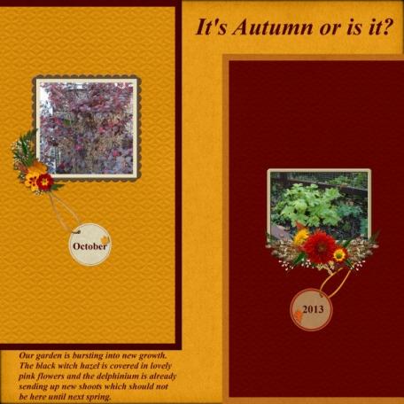 It's Autumn or is it?