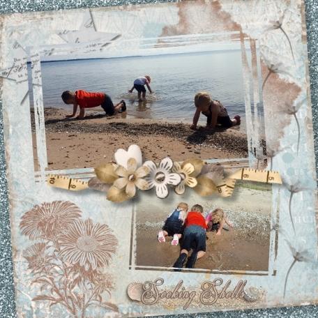 Seeking Shells