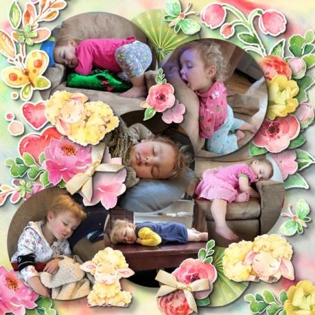 New Beginnings Sleepy Maya