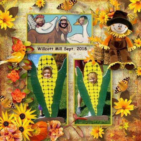 Autumn Air Willcott mill