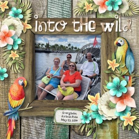 Into the Wild Everglades