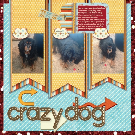 Crazy Dog (Lola)
