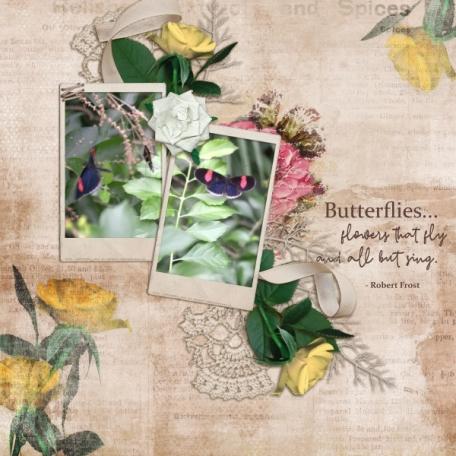 Butterflies (Rosy Posy)