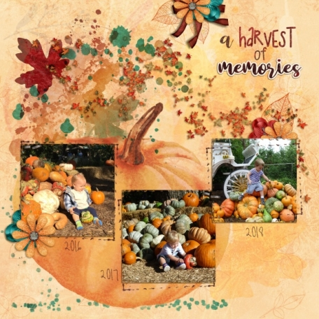 A Harvest of Memories (October Leaves)