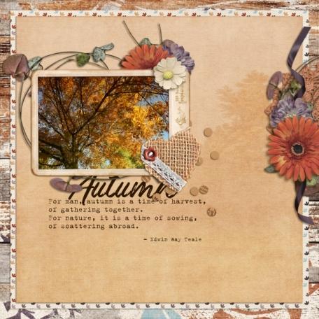 Autumn (Suddenly)