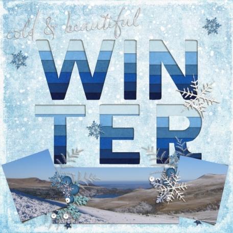 Winter (Winter Solstice)