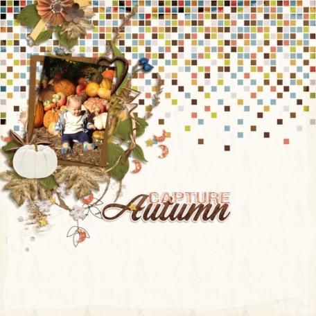 Capture Autumn