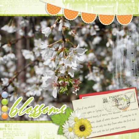 Blossoms (Splendor)
