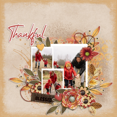 Thankful (Counting the blessings)