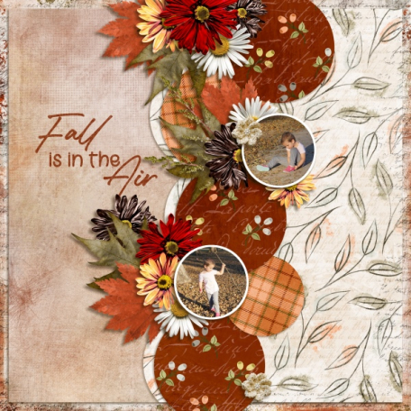 Fall is in the air (Autumn Treasures)