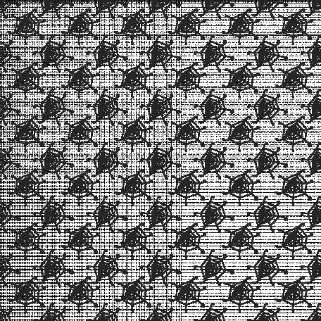 Spider Web 01 Overlay