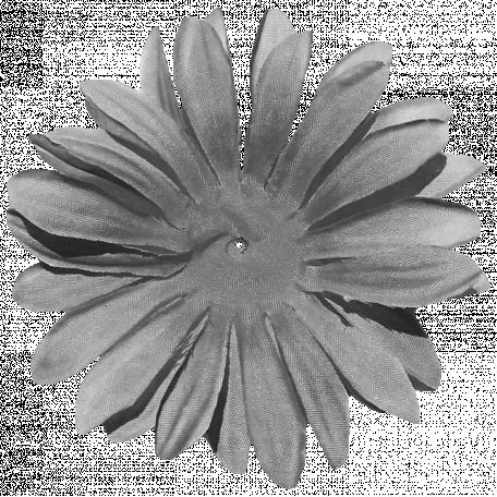 Flower 03 Template