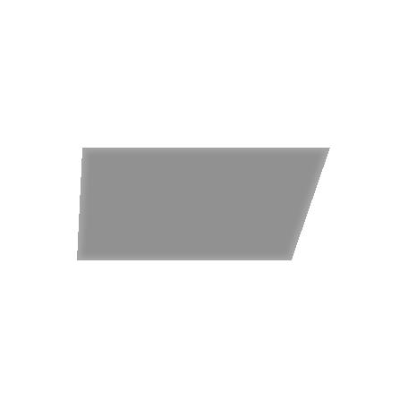 Washi 09 - Clear Template