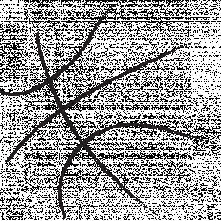 Basketball Sketch Ball Lines Graphic By Brooke Gazarek Pixel Scrapper Digital Scrapbooking